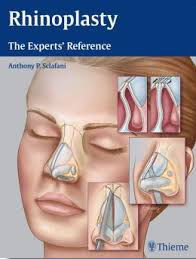 Rhinoplasty Experts Reference
